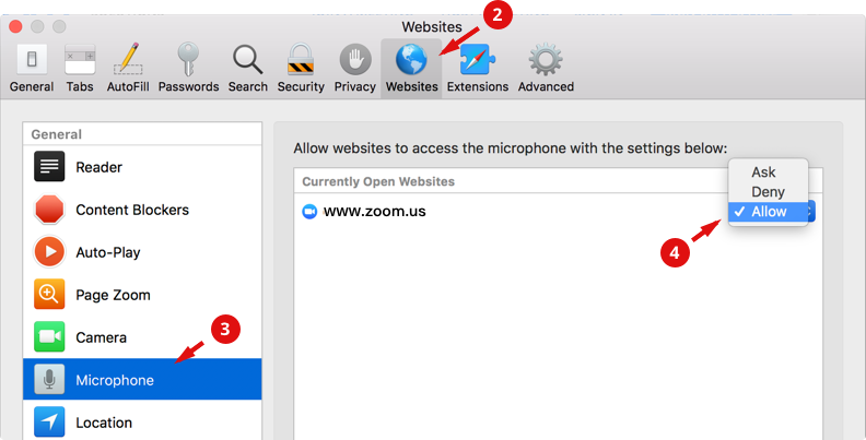 allow mic in safari 2